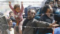 Syrian Refugee 11 2015