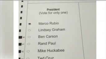 fake rubio ballot Virginia 3 1 16