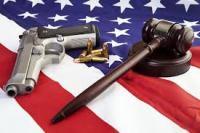 Gun_Flag_Judge