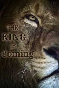 Lion_The King is Coming_large